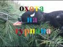 Охота на турпана в Якутии hunting for ducks in Yakutia