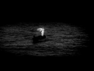 Бегущая по волнам 1967/ Маргарита Терехова