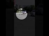 Жители Северной Осетии возмущены отходами лошадей на дорогах