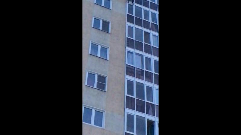 Переговорщик 80 lvl Суицид