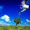 Big Tree гостиничная тренинговая компания
