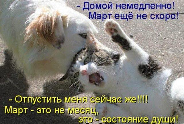 https://pp.userapi.com/c841636/v841636818/67b42/-T17tSFpPRk.jpg