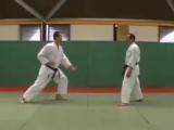 6 Jion Kata Kumite Bunkai Didier Lupo