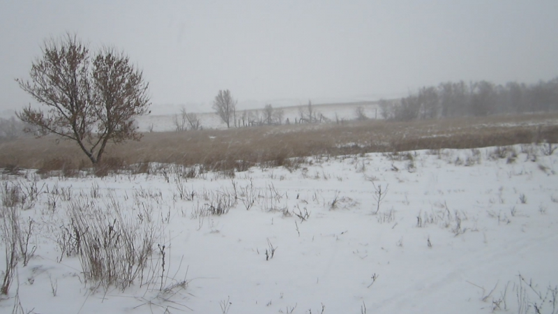 Долгожданный снег. 21.01.2018 г.