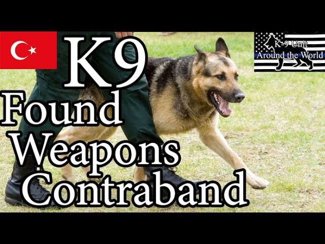 REAL - Police Dog (K9) Found Contraband Weapons into the Vehicle Fuel Tank
