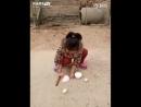 трюки-Уличная-магия-гифки-азиатка-4321795