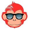 Создание сайтов, лендинг пейдж - Digital Monkey