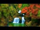 Красивое видео друга, и природы.