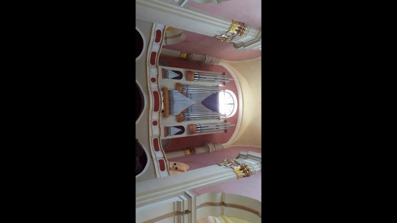 Концерт органной музыки в Софийском соборе в Полоцке (да, вертикально, так получилось :))