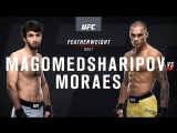 UFC Fight Night 122 Magomed Sharipov vs Moraes
