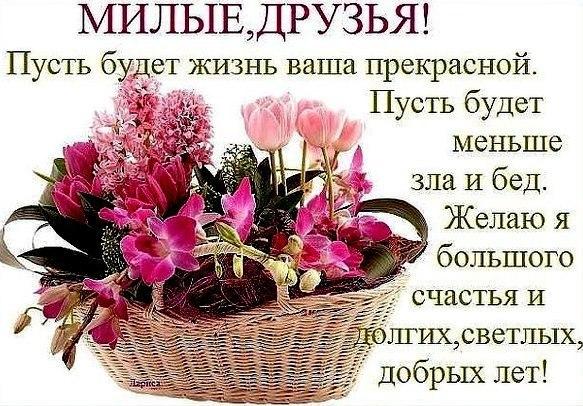 https://pp.userapi.com/c841637/v841637870/9b1f/ldLVSMzqicc.jpg