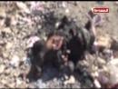 شاهد جرائم العدوان السعودي الأمريكي بحق الشعب اليمني والصمت الدولي المميت
