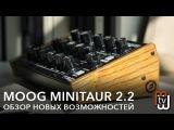 Moog Minitaur 2.2 - обзор новых возможностей