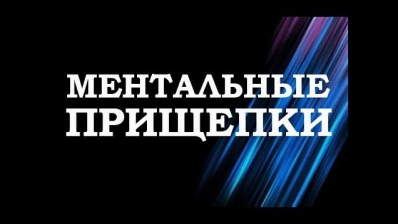 Вадим Зеланд — Ментальные прищепки