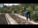 Восстановление плодородия почвы после уборки урожая