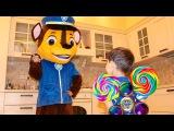 Джони Джони да папа Щенячий патруль Bad Kid Steals Candy Johny Johny yes papa Nursery Rhymes Song