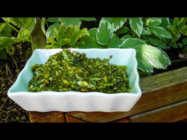 Giersch-Pesto Rezept | Der Bio Koch 727