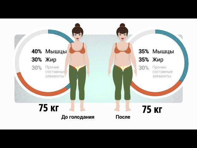 Отличие жира от мышц. Вред голодания. Важность ЗОЖ, правиильного питание и спорта