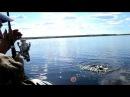 Рыбалка в Карелии 18
