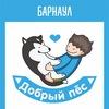 """Благотворительная акция """"Добрый Пёс""""-11"""