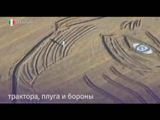 Фермер из Италии создал на своем поле портрет Путина