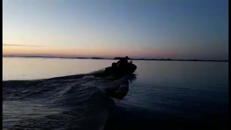 Delfin 260киль