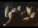Трагическая история Бексултана в Вел Отеч войну