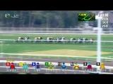2018 The BMW Hong Kong Derby - Ping Hai Star  R.Moore