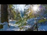 Красота подмосковной зимы