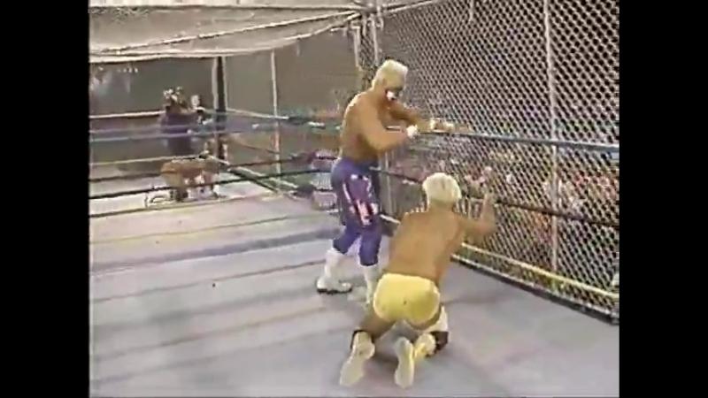 WWE Mania WCW 91 02 24 WarGames WrestleWar