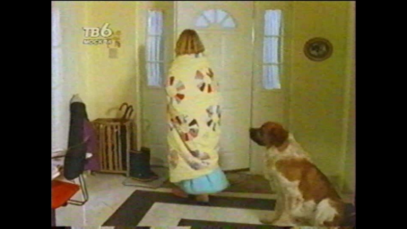 Т/С Дом собаки 13 серия (1991г)