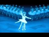 Алена Ковалева в балете Лебединое озеро (Большой театр) VK: #урокиХореографии