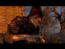 П Ивасик и сложный выбор The Witcher 3 ep 25 2