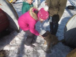 5 Апреля . Адаптация собаки из приюта в семью .Участие детей обязательно.