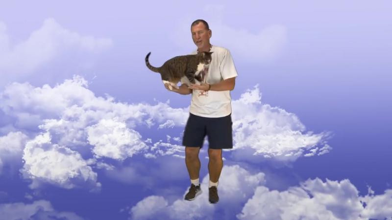 Didga - самая умная кошка в мире по версии книги рекордов Гиннеса