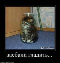 Ergr Ergr, 17 февраля 1990, Донецк, id73635668