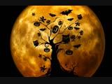 Гадаем на суженого в канун Хеллоуина - с экспертом LiveExpert.ru Елена Salamandra
