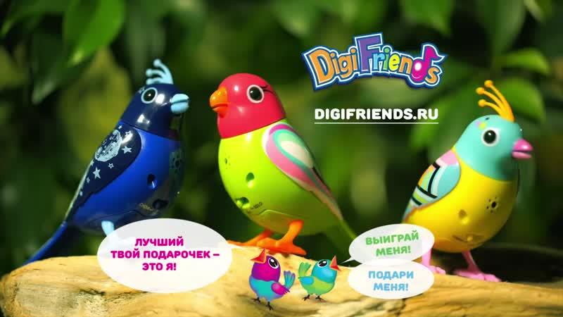 DigiBirds кто они и где обитают