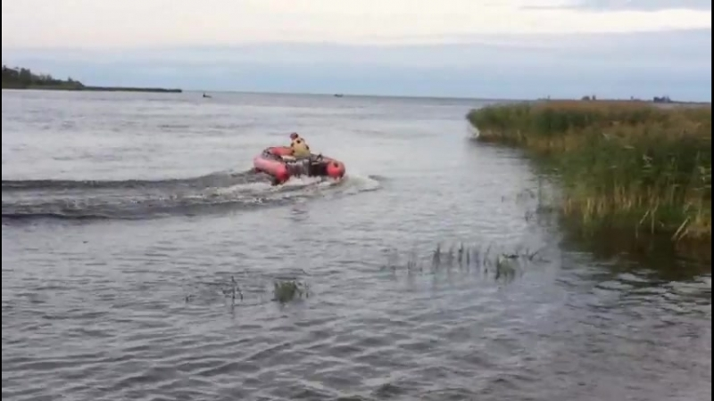 Arenda_Motor Мнев и Ко 470Fна дистанции SeaPro 9,9(15)