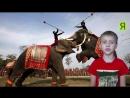 🇰🇿КУДА СХОДИТЬ В АСТАНЕ ТОП 5🇰🇿 с детьми с ребёнком ЭКСПО Айленд Канго Happylon Цирк Скоро Новый год