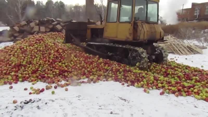 Челябинская таможня давит яблоки