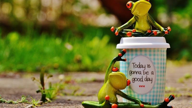 Afirmatii pozitive zilnice - Schimba-ti viata prin intentie, emotii, vointa si ganduri