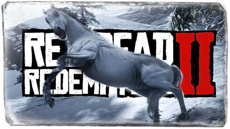 ГДЕ НАЙТИ АРАБСКОГО СКАКУНА? ● Red Dead Redemption 2 8