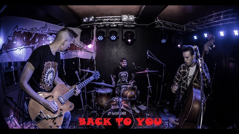 The Squidbillys - Back To You