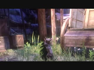 Saw a cat in Strawberry sharpen his claws on a wood post. Red Dead Redemption 2