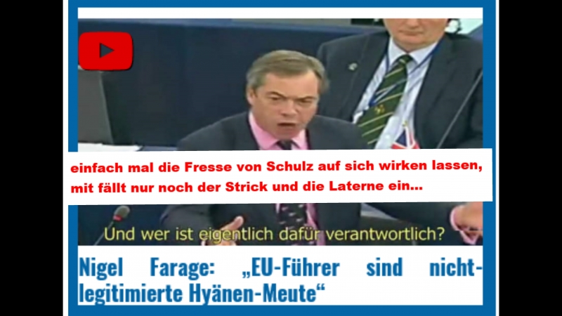 Nigel-Farage_EU-Fuehrer-sind-nicht-legitimierte-Hyaenen-Meute