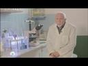 О пользе спирулины в передаче Супер продукт НТВ