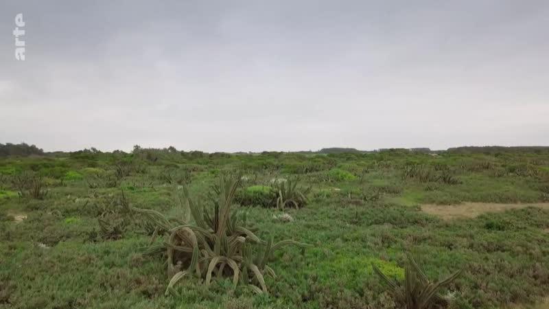 Uruguay Kleines Land am großen Río de la Plata