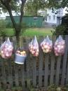 Так наши соседи оставляют яблоки для тех, кто живет в многоэтажных домах.