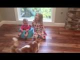 «Дорогой, мы съели твои конфеты»- родители разыгрывают детей (6 sec)